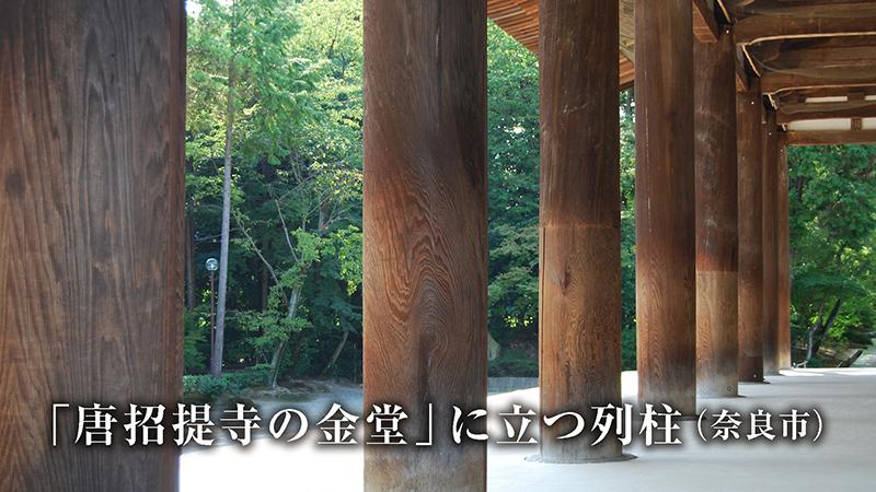 奈良・唐招提寺の金堂に立つ列柱